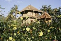 Small Eco-Resort in huge garden on the border of a traditional Balinese village