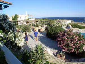 The garden of the 'Oasis at the sea'