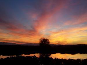 Sonnenuntergang am Etang
