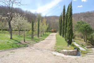 Entry lane to the villa