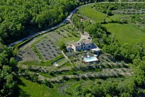 The wide private garden around the villa