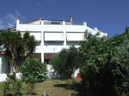 House in Tholo, Kyparissia, Zacharo, Olyimpia, Lepreon