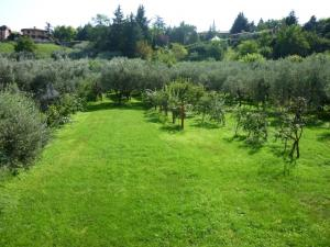 Garden of the Villa Luciana