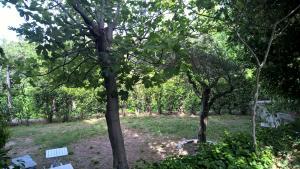 Landvilla garden