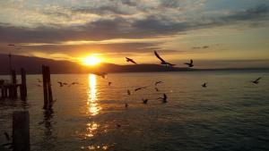 Romantic Lake Garda: Salò